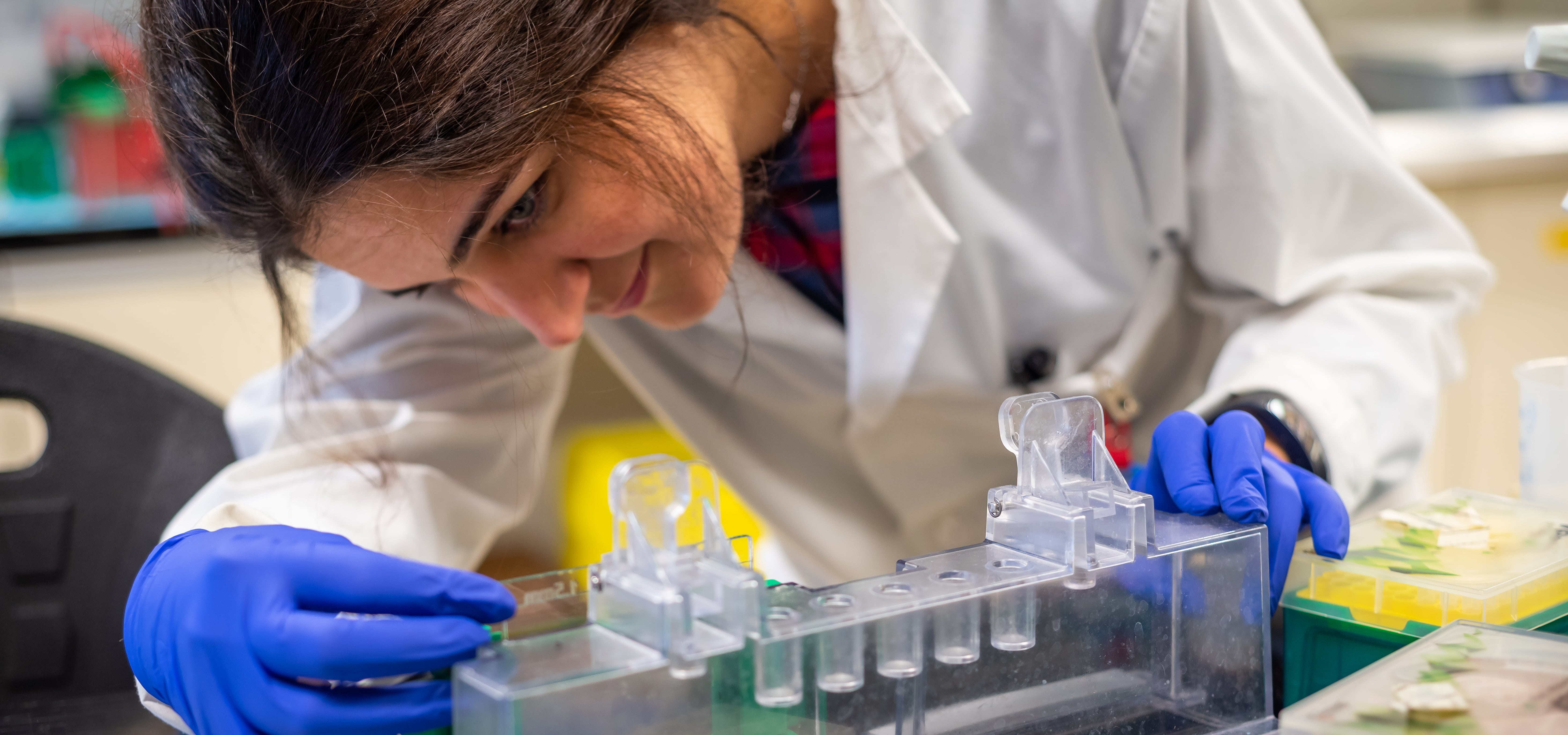 Photo of a young woman in a lab coat studying test tubes
