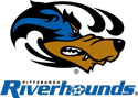 Pittsburgh Riverhounds logo